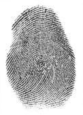 真正的指纹 — 图库照片