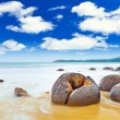 Moeraki Boulders — Stock Photo