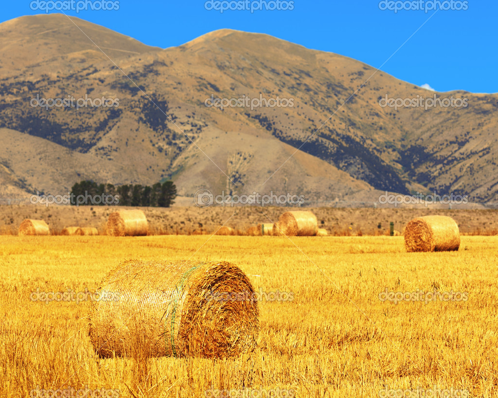 Rural lanscape. Golden Hay Bales on the foreground — Stock Photo #10856891