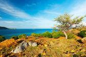 Seraya island — Foto Stock