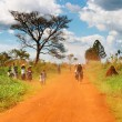 African countryside — Stock Photo #11539824