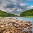 Katun river - Stock Photo