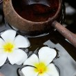 Wooden scoop and flowers - 图库照片