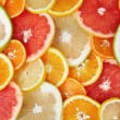 Citrus background - Foto de Stock