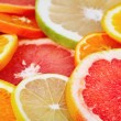 Citrus fruits — Stock Photo #11648873