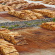Timber export terminal - Stock Photo