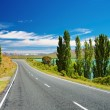 New Zealand landscape — Stock Photo #11919426