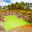 Devil's Bath volcanic crater, New Zealand - Stock Photo