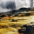 Pohutu Geyser, New Zealand - Foto Stock