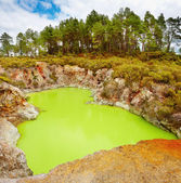 Devil's Bath volcanic crater, New Zealand — Stock Photo