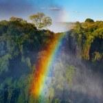 Rainbow over Victoria Falls — Stock Photo #12164195