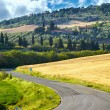 Typical landscape in Val d'Orcia ( Tuscany, Italy) at summer. Ro - Стоковая фотография