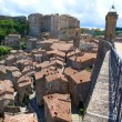 Italian city rooftops — Stock Photo #11389363