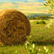 Tuscany Landscape With  Hay Bales - Stock Photo