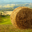 Golden hayfield in a bright blue sky in  tuscany - Stock Photo