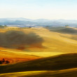 Country landscape. Typical tuscan hills in Italy. Hand drawn ill — Stock Photo #11549385