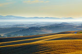 Hilly countryside in tuscany — Stock Photo