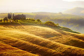 Landscape in Tuscany at sunset in summer — Stock Photo