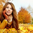 Young brunette woman portrait in autumn color — Stock Photo #11798365