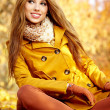 Young brunette woman portrait in autumn color — Stock Photo #11798414