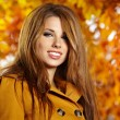 Portrait of very beautiful young woman in autumn park - Foto de Stock