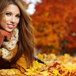 Portrait of very beautiful young woman in autumn park — Stock Photo #11987060