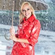 Woman in raincoat smiling as she holds umbrella — Stock Photo #12121611