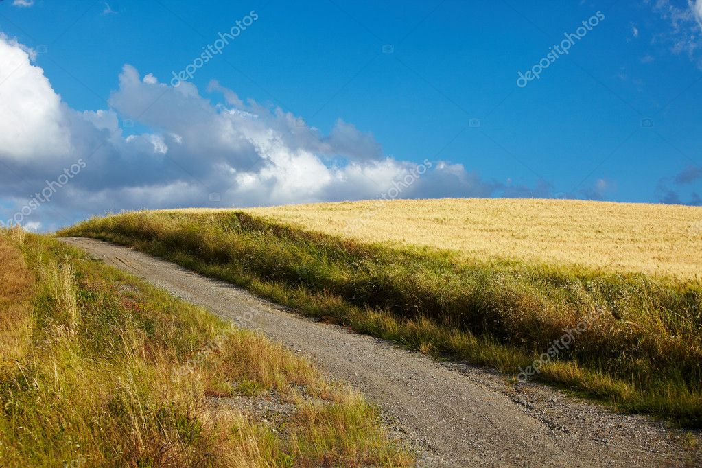 Typical Tuscany landscape, Italy — Stock Photo #12212747