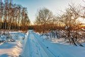 Atardecer en el campo del invierno — Foto de Stock
