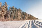 Kış manzarası — Stok fotoğraf