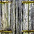 Close-up image of ancient door — Stock Photo
