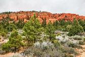 犹他州的风景。美国 — 图库照片