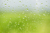 Water drops on window glass — 图库照片