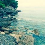 Sea shore — Stock Photo #11854070