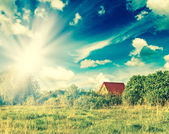 летний пейзаж — Стоковое фото