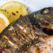 Fish, sea bass grilled with lemon — Stock Photo #12025558