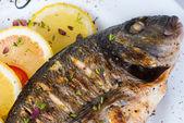 Peixe, robalo grelhado com limão — Fotografia Stock