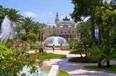 Impeccable garden in Monaco — Stock Photo