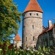 Stock Photo: Towers of Tallinn. Estonia