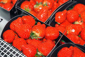 Ripe red strawberries — Stock Photo