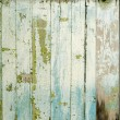 Old wood background — Stock Photo #11084780