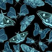 Fond transparent avec papillon — Vecteur