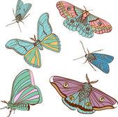 Ensemble de deux papillons de couleur mignon — Vecteur