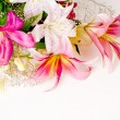 White and pink lily flowers — Stock Photo #11798007