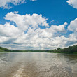 River in the summer — Stock Photo