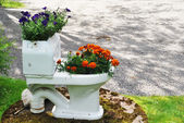 Bowl flowerpot with flowers in the garden — Stock Photo