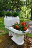 Flowerpot bowl of flowers in the garden — Stockfoto