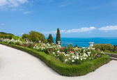 Beautiful landscape - white roses, sea and sky in Vorontsov Palace — Stock Photo