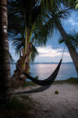 Evening view of hammock strung between two palms on tropical isl — Stock Photo