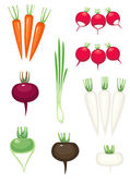 Vegetables , vector without gradient — Stock Vector